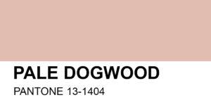 PANTONE-13-1404-Pale-Dogwood